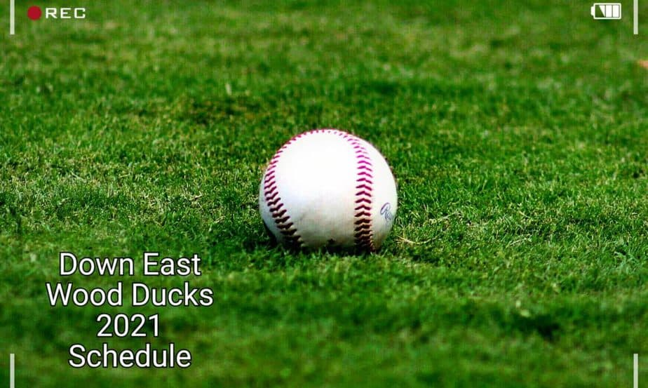 Down East Wood Ducks 2021